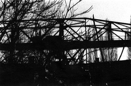 Metallbäume, 1997, Fotografie
